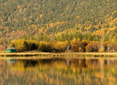 Orange & Green (Karen_Chappell) Tags: autumn fall orange trees green pond calm water reflection longpond stjohns pippypark avalonpeninsula canada atlanticcanada october scenery scenic landscape