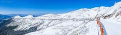 Harry_30974,,,,,,,,,,,,,,,,,,,Winter,Snow,Hehuan Mountain,Taroko National Park,National Park (HarryTaiwan) Tags:                   winter snow hehuanmountain tarokonationalpark nationalpark     harryhuang   taiwan nikon d800 hgf78354ms35hinetnet adobergb  nantou mountain