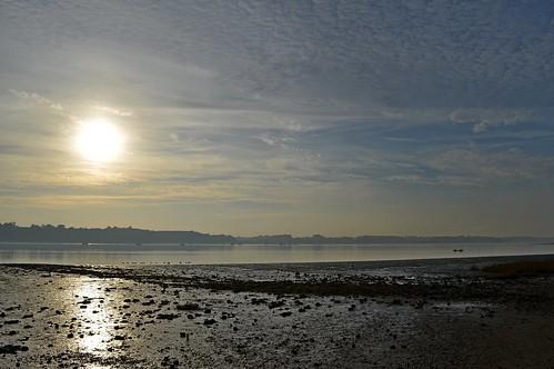Nacton Shores Landscape