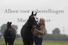15 oktober 2016-43-2 (MZorro4) Tags: mariekehaverfotografie oudesluis schagen paardenfotografie portretfotos rijden wwwmariekehaverfotografienlpaarden