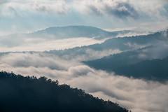 Smoky Mountains (Jon Ariel) Tags: nc transylvania transylvaniacounty fog clouds smoke valley mountains smokymountains northcarolina