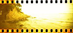 film (La fille renne) Tags: film analog 35mm lafillerenne sprocketrocket lomography lomographyxpro200 xpro crossprocessing landscape nature sea beach lalondelesmaures mediterranean roadtrip travel