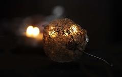 MM Glowing Lantern (MeEvita) Tags: nikon d300 photography macromondays backlit evam