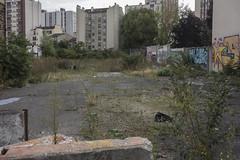 . (Le Cercle Rouge) Tags: aubervilliers france terrainvague buildings projects painters graffs graffitis handstyle flop ruelcuyer