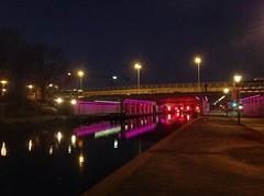 Pink viaduct (sander_sloots) Tags: viaduct pink roze schiedam station centrum led verlichting lighting bus ret horvathweg schie lantaarnpalen streetlights