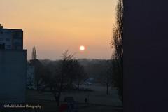 "Sunrise Cold ""Third Edition"" (khalid.lebdioui) Tags: flickrunitedaward sunrise cold leverdusoleil nikon d5200 alsace france guebwiller froid brouillard fog flickr estrellas"