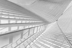 Lines 1 (in explore) (tan.ja1212) Tags: belgien belgium lüttich liège bahnhof trainstation monochrom stahl glas steel glass highkey