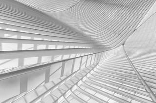Lines 1 (in explore)