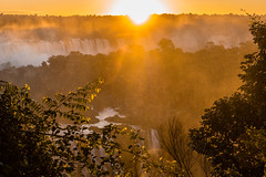 Fireball (*Capture the Moment*) Tags: 2016 brasilien brazil bume fog fozdeiguazu goldenhour goldenestunde iguacu jungle landschaften mist sonne sonnenuntergang sonye18200mmoss sonynex7 sun sunset trees urwald wasserflle wassernebel waterfalls wetter