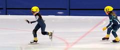 Taking the lead (diffuse) Tags: twelve skating speedskating falcon