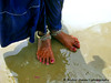HINGLAJ PILGRIMAGE 2016 (Bashir Osman) Tags: hinglaj hinglajmata hinglajyatra hingol devotees stopover rituals baluchistan teerathasthan puja people culture pakistaniculture culturallife hindu pakistanihindus hindureligion hindusinpakistan hingorriver hingolriver ashnan bath nanitemple nanimandir nani hindutemple પાકિસ્તાન pakistan باكستان পাকিস্তান pakistāna 파키스탄 パキスタン 巴基斯坦 pakistanas پاکستان paquistão пакистан pakistán travelpakistan aboutpakistan balochistan bashirosman bashir bashirusman bashirosman'sphotography peopleandplaces tradition traditionalcelebration pakistaniethnicity pakistani ethnicity minoritiesinpakistan barefeet feet foot anklet