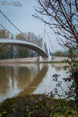 Walking bridge (v.Haramustek) Tags: osijek osjekobaranjskaupanija croatia hr walkingbridge slavonija green river drava water crossing outdoor