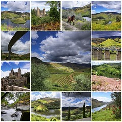 Douro Valley where Port Wine is produced (B℮n) Tags: pesodaregua rioduore unesco werelderfgoed duore valley wines port sandeman taylors cockburns alto upper douro pesodarégua portugal river hillside grapes vineyards portwine riverside rural bridge train scenery landscape spring riotinto ermesinde valongo paredes penafiel livracao marcodecanaveses pinhão eiffel rio tedo quintadotedo estate flowering moss scenicsnotjustlandscapes flowers yellow qtadoseixo cimacorgo wine taste olive tree casaldosjordões rcimodavila n222 quintadoseixo clouds fdsflickrtoys best collection collage