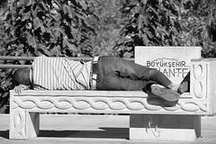 Gaziantep Session (Swissrock-II) Tags: gaziantep antep park sleep blackwhite bw turkey trkey nikon street streetmoments streetphotographie
