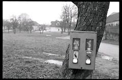 img029FL (Ronald's Photo Factory - www.ronaldgiebel.eu) Tags: ullrichs waldviertel austria österreich nikomat ft2 35mm film photography kodak trix400 wwwronaldgiebeleu ishootfilm classiscamera slr landscape nature
