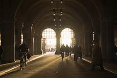 ight Portal (ThanosPal) Tags: amsterdam museum light sunlight sun bikes fiets fujifilm street