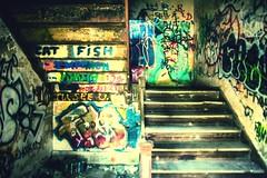Cat Fish (Thomas Hawk) Tags: corktown detroit mcs michigan michigancentraldepot michigancentralstation usa unitedstates unitedstatesofamerica abandoned graffiti stairs stairway