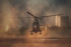Landing (Aliraza Khatri) Tags: helicopter landing ideas expo army protocol photoshop drama karachi sindh pakistan aliraza alirazakhatri khatri