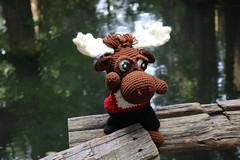 IMG_0672 (The Crochet Crowd) Tags: crochetmoose amigurumi moose crochet doll alaska britishcolumbia thecrochetcrowd michaelsellick jeannesteinhilber danielzondervan crochetcruise mooseontheloose