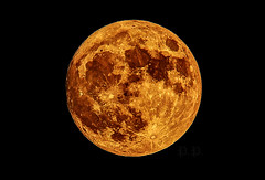 Supermoon Nov 14, 2016 Rockville (capturingthelight69) Tags: supermoon moon 2016 november 14 olympus omdem5markii omd omdm5 ii mm f28 40150mmf28 omdm5ii night landscape olympus40150mmf28pro
