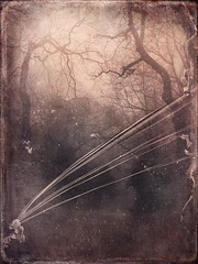 Sling (lindyginn) Tags: sling ipad iart finger painting grey ethereal surreal landscape sky dark foggy eerie pink particles photo iphoto trees texture abstract plants pop dream alien