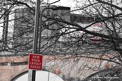 The bridge over no river........why? ((c) MAMF photography..) Tags: art britain blackandwhite blackwhite bw biancoenero city england enblancoynegro blancoynegro blanco blancoenero flickrcom flickr google googleimages gb greatbritain inbiancoenero image leeds ls1 leedscitycentre citycentre mamfphotography mamf monochrome nikon noiretblanc noir north nikond7100 negro northernengland onthestreet photography photo pretoebranco schwarzundweis schwarz street selectivecolour kirkgate town trees tree uk unitedkingdom upnorth westyorkshire yorkshire zwartenwit zwartwit zwart