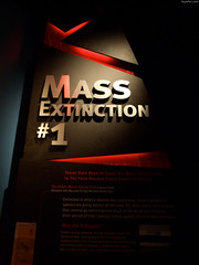 "Mass Extinction #1 • <a style=""font-size:0.8em;"" href=""http://www.flickr.com/photos/34843984@N07/14919873153/"" target=""_blank"">View on Flickr</a>"