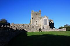 Tintern Abbey (Ken Meegan) Tags: ireland tinternabbey cowexford saltmills