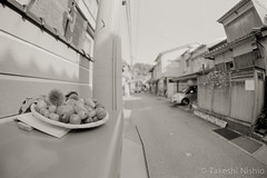 / The Usual Post (Takeshi Nishio) Tags: uv ilfordfp4plus nikonfm3a   16mmfisheye  ei125  spd1120deg7min filmno796