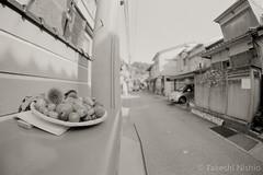 いつものポスト / The Usual Post (Takeshi Nishio) Tags: uv ilfordfp4plus nikonfm3a 白黒 フィルム 16mmfisheye ネガ ei125 いつものポスト spd1120deg7min filmno796