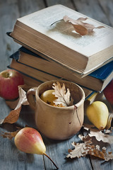 Back to school (Speleolog) Tags: wood old school autumn red food fall texture apple nature leaves fruit vintage garden season table book design wooden back healthy education natural symbol desk background space rustic harvest science stack retro september note study cover page pear bunch knowledge backdrop concept lesson wisdom brochure learn backtoschool textbook harvesting