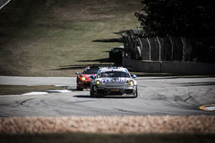 Petit Le Mans 2014 Skidmorephotography (Matt Skidmore Photography) Tags: road atlanta cars car race speed track wing deltawing fast delta tudor course mans le porsche series corvette lamborghini petit srt 2014 roadatlanta petitlemans