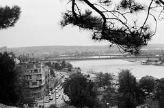 View over Belgrade (petzoj) Tags: bw white black analog canon 50mm blackwhite ae1 f14 serbia belgrade canonae1 fdlens lucky100