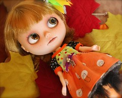 Blythe A Day october 7, 2014  Autumn Leaves