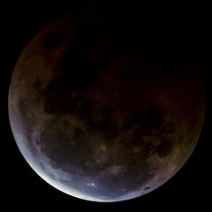 Eclipse 8OCT14 - Stephen Booth (Stephen Booth) Tags: moon eclipse australia brisbane fullmoon qld queensland bloodmoon redmoon wwwstephenboothphotographycomau photo2014stephenbooth 8oct14
