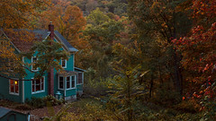 (EYECCD) Tags: autumn sunset ny fall nature colors leaves forest river landscape town woods dusk upstate tiny hudson quaint majestic picturesque bluehouse leafing railtrail rosendale 550d rosendaletrestle