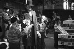 New York (Anna Indalecio) Tags: new leica york nyc summer ny newyork chicken photography streetphotography williamsburg jew jews orthodox 2014 nyfa m240 leicam240