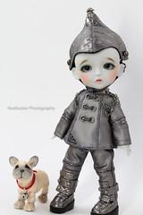 A Tinman's Dog (Reallusion) Tags: dog cute halloween grey doll special tiny lea woz bjd wizardofoz limited tinman latidoll lati fullset latiyellow daisydayes greylea