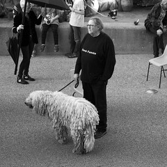 De man en zijn hond (Patrick Mollema) Tags: mensen argentat straatfotografie fetedelasoupe correze