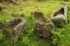 Necrpole de S. Martinho (Daniel Caridade) Tags: portugal nova tomb medieval vila tmulo touro paiva smartinho necrpole almonexe