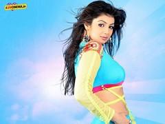 Ayesha Takia Latest Pics (26) (I Luv Cinema.IN Bollywood) Tags: gallery pics latest takia ayesha