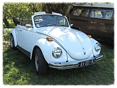 VW Beetle 1302 Convertible (v8dub) Tags: auto old classic car vw bug volkswagen automobile beetle convertible automotive voiture german cox oldtimer oldcar 1302 cabrio collector käfer coccinelle cabriolet kever fusca aircooled youngtimer wagen pkw klassik maggiolino bubbla worldcars
