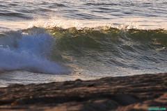 SeasonsChangingAgain (mcshots) Tags: ocean california sunset sea usa beach nature wet water reflections evening coast sand surf waves seasons stock shoreline socal mcshots swells springtime losangelescounty