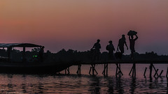 To home (abhishek Basuroy choudhury) Tags: light india silhouette twilight low bengal riverboats
