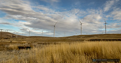 2014-10-12 Washington Goldendale Windy Flats Windmills-1 (Michael Schmidt Photography Vancouver) Tags: blue sky brown white black grass yellow clouds project grey be