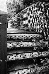 steps (pamelaadam) Tags: bw digital scotland meetup fotolog september 2009 lothian prestongrange thebiggestgroup