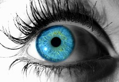 Blue Eye (Eileen Mess) Tags: blue bw macro eye canon colorful blau makro auge farbig schwarz poweshot g9 eileenmess desktopbackrgound