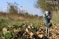 Monster High Frankie Stein (capricornmeadow) Tags: autumn monster high doll frankie custom stein wander monsterhigh threadarella