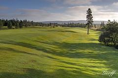 Osprey hole #8 (gwhiteway) Tags: travel 2 3 canada green tourism nature wet colors sunrise newfoundland golf landscape hole 14 stjohns course dew golfing 17 nl 18 clovelly moisture osprey golfscape