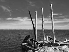 11102014-DSC00119 (sbstnhl - Siti) Tags: bw blanco lago agua sony inundacion negro bn ruinas dsch2 epecuen